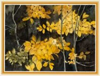 They don't alliterate October with gold falling from the fragile trees
